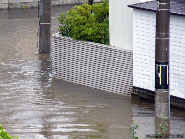 札幌は、豪雨によって一部冠水しているところがあります。ご注意くださいませ。 近所も道路が冠水しました。はじめてみたよ。
