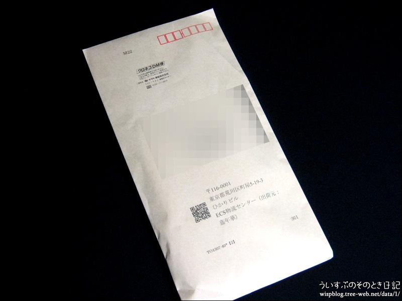 嘉年華 Yahooショップ [梱包写真]