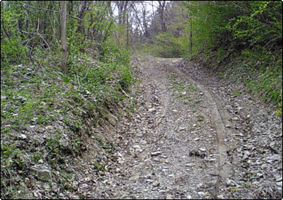 風景・田舎道3