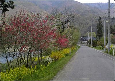 風景・田舎道4