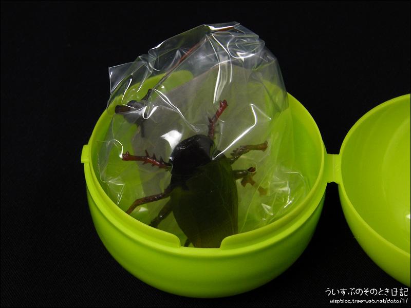 カプセルQミュージアム 衛生害虫博覧会 ~身近に潜む生活害虫~  □ クロゴキブリ 今回出たのは