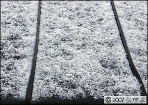 今の雪の状況