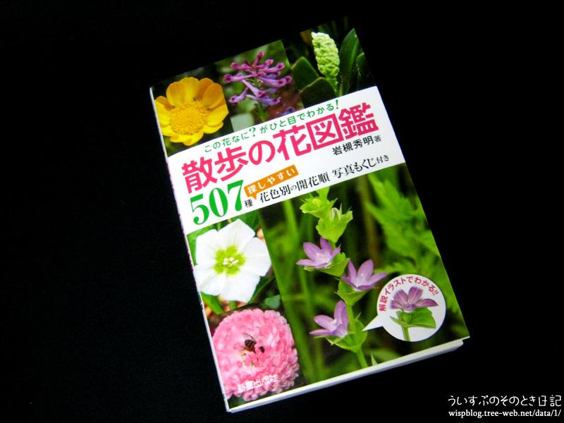 この花なに?がひと目でわかる! 散歩の花図鑑