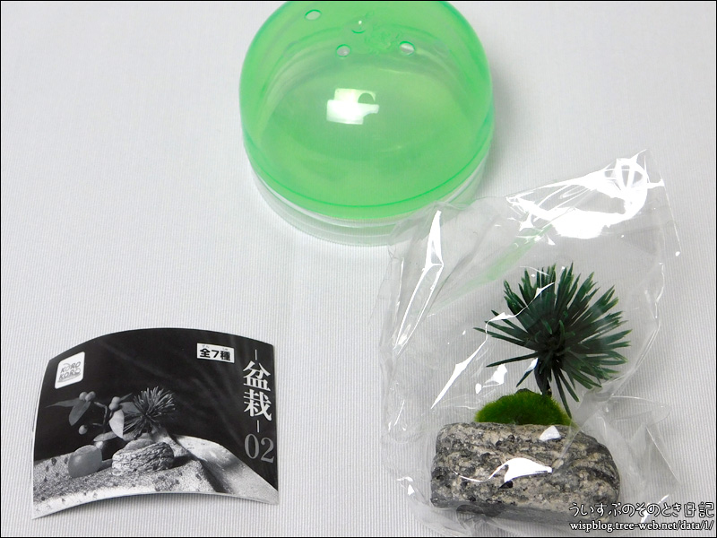 BONSAI -盆栽- 02 [アイピーフォー]