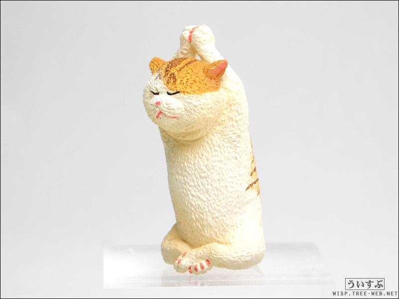 ANIMAL LIFE Baby Yoga Cat [ユニオンクリエイティブ]