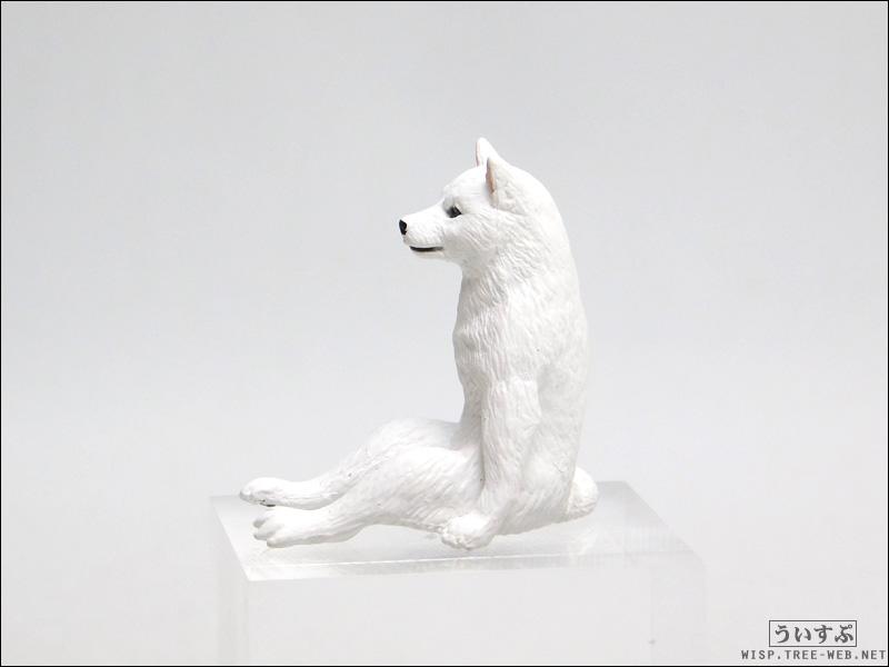 座る犬 [キタンクラブ]