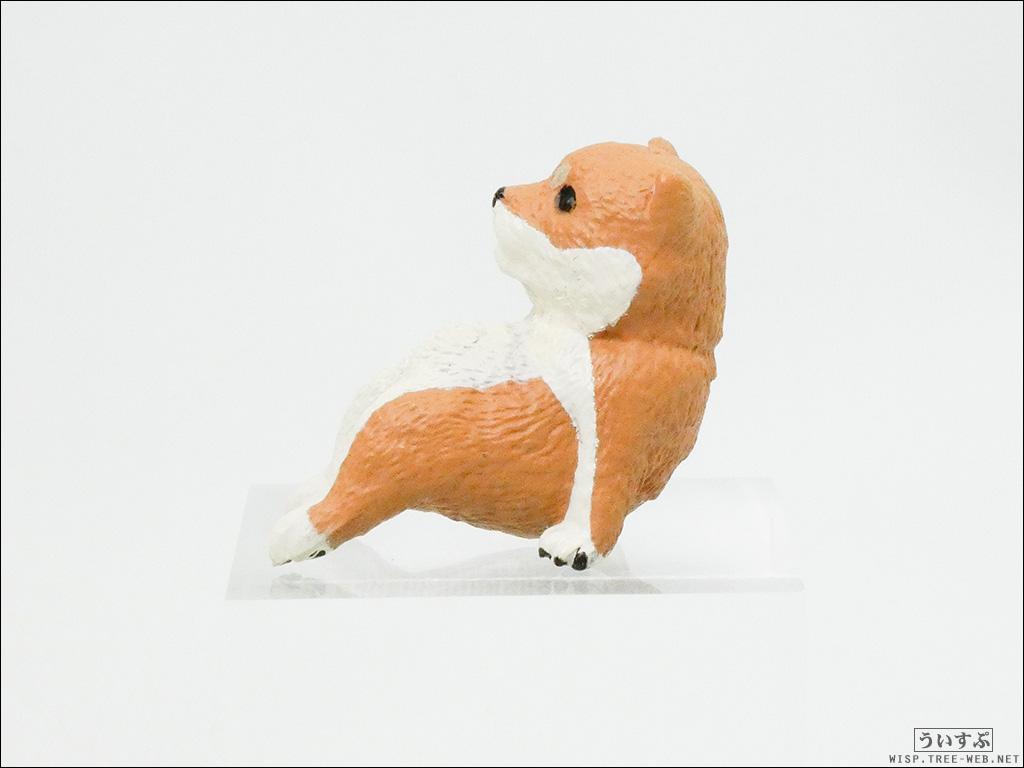 ふちやすみ 柴犬 [エール] / 赤柴〜こしかけ〜