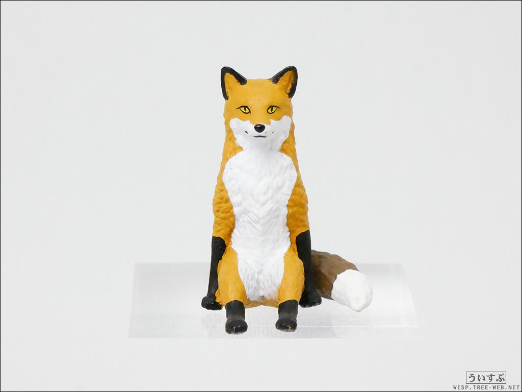 座る狐 [キタンクラブ]