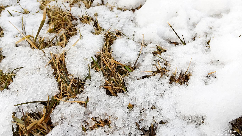 あられ 雪