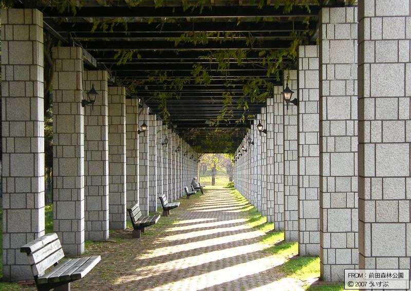 前田森林公園「藤棚」