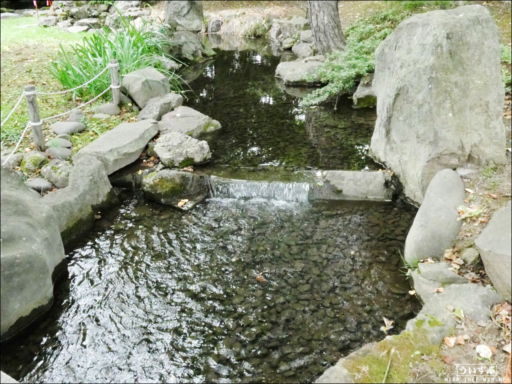 中島公園 −八窓庵と日本庭園−