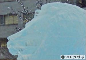 2丁目 氷の広場 ライオン