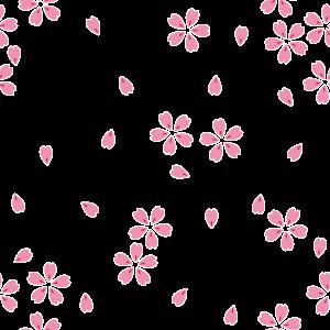 桜の背景画像