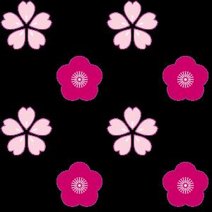 梅の桜のパターン