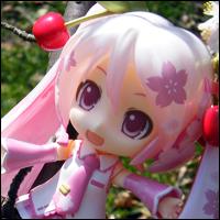 桜がとても綺麗でした。