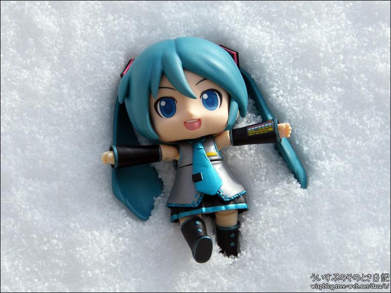 どか雪 60センチ!