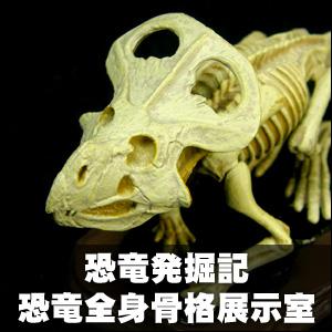 カプセルQミュージアム 恐竜発掘記6 恐竜全身骨格展示室 [海洋堂]