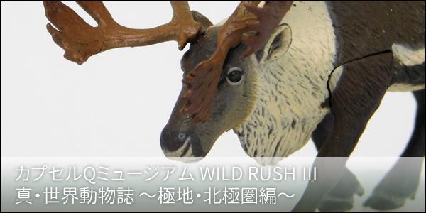 カプセルQミュージアム WILD RUSH 真・世界動物誌3 〜極地・北極圏編〜 [海洋堂]