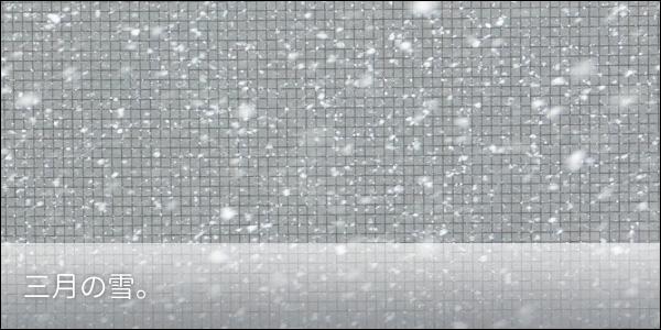 3月の雪。