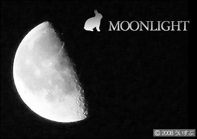 月明かり -moonlight-